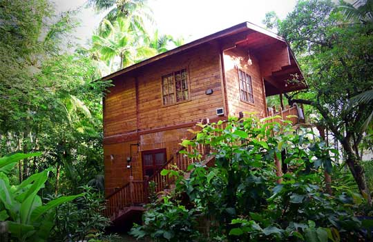 Thottada-Beach-House-Best-Kerala-Home-Stay-View-home