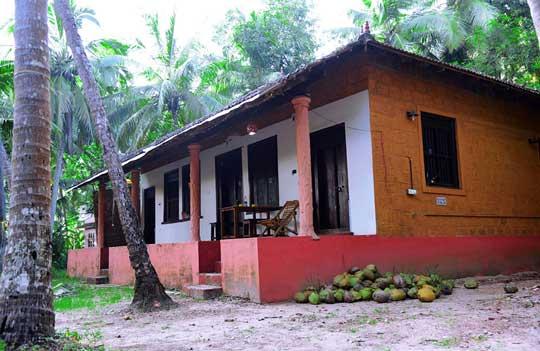 Thottada-Beach-House-Traditional-Kerala-Village-House-home