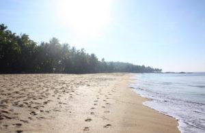 beach-thottada-beach-house
